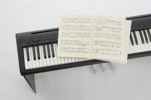 ES 110